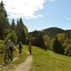 kolesarjenje po kolovozu